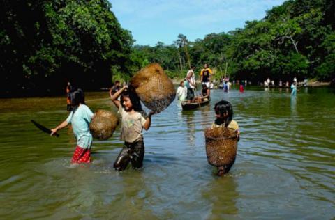 Sarayaku-folket lever mye av fiske. De har opplevd store ødeleggelser etter at det ble startet oljeleting på deres territorie. Foto: Fundación Pachamama