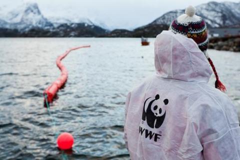 Photo from WWF-Norway's campaign in Lofoten. Photographer: © Jørgen Kvalsvik